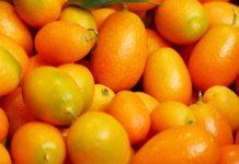 Kumquat-Likör